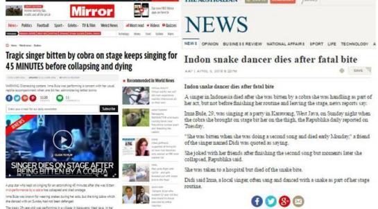 3 Kematian Akibat Ular di Indonesia yang Hebohkan Dunia3