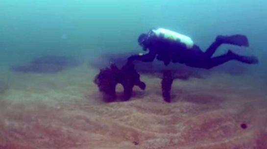 hunian-purba-dalam-air-di-swedia-9000-thn-lalu